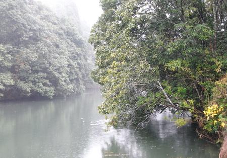 20081125ame01.jpg