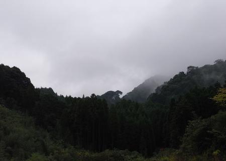 20081125ame03.jpg