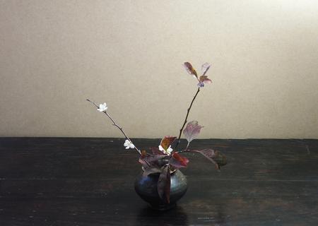 20081211siogetohana01.jpg