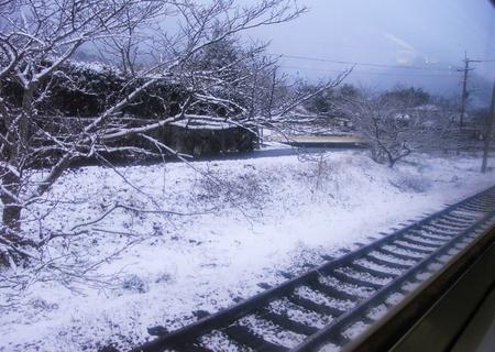 20090124shihogenoyomeiri02.jpg