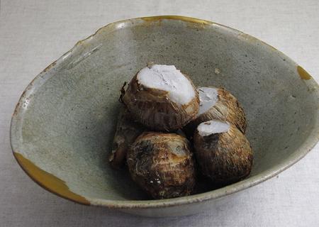 20091015shioaji.02.jpg