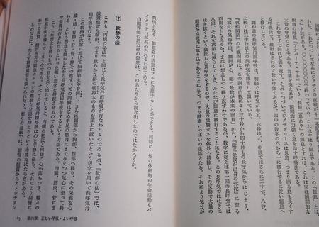20100406sakura03.jpg