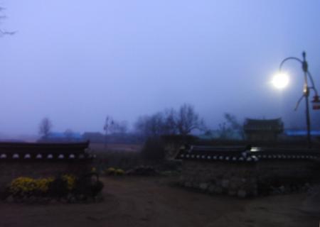 20111116korea001.jpg