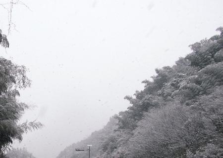 20120205mishima00.jpg