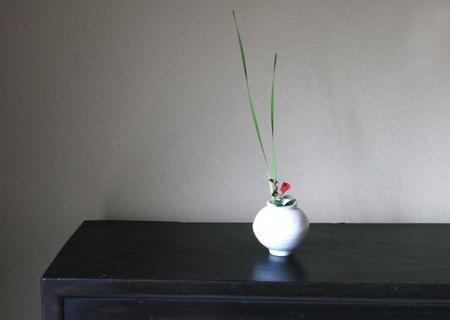 20120707hakujitubo02.jpg