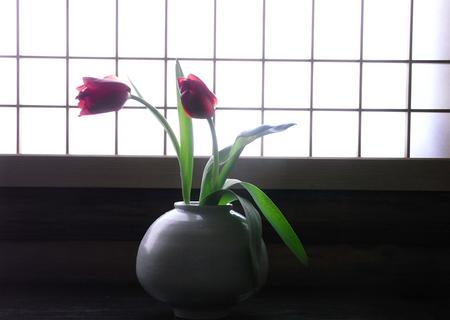 20130118samuihi01.jpg