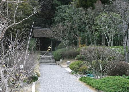 20130208ashiyagama01.jpg