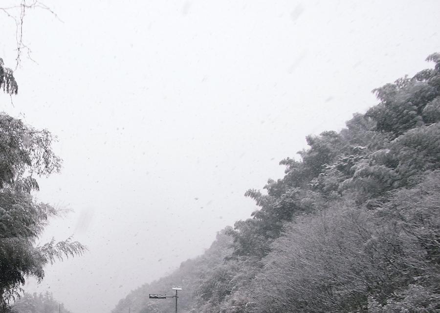 http://www.utuwa-ya.jp/blog/photo/20120205mishima00.jpg