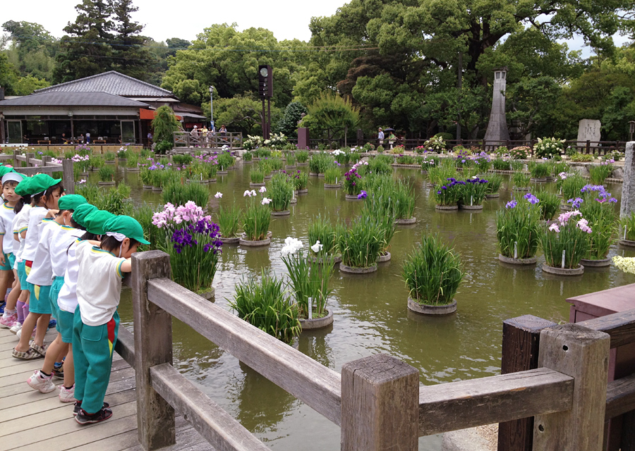 http://www.utuwa-ya.jp/blog/photo/20120702dazaifu01.jpg