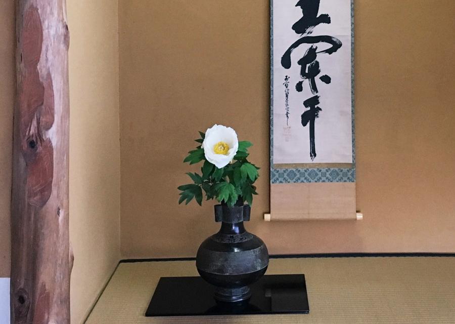 http://www.utuwa-ya.jp/blog/photo/20170511cyakai05.jpg