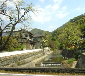 toukimaturi2006.jpg
